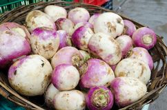 Turnips for Sale Stock Photography