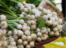 Turnips for Sale Stock Images