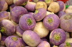 Turnips Royalty Free Stock Images