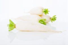 Turnips in white background Stock Photos