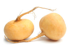 Turnips Royalty Free Stock Photo