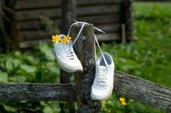 Turnschuhe auf dem Hintergrund von wild lebenden Tieren Weiße weibliche Schuhe im Freien auf dem Bretterzaun, gebunden mit Spitze lizenzfreie stockfotografie
