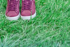 Turnschuhe des rosa Veloursleders auf dem Rasen im Park lizenzfreie stockbilder