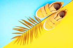 Turnschuhe und ein Zweig von Palmen auf einem modischen Hintergrund der gelb-blauen Farbe lizenzfreie stockfotografie