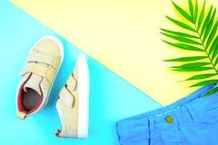 Turnschuhe und ein Zweig von Palmen auf einem modischen Hintergrund der gelb-blauen Farbe lizenzfreie stockbilder
