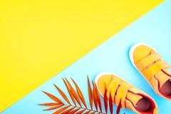 Turnschuhe und ein Zweig von Palmen auf einem modischen Hintergrund der gelb-blauen Farbe lizenzfreies stockbild