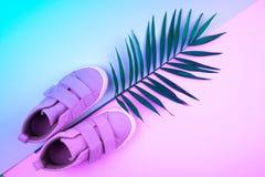 Turnschuhe und Zweig von Palmen auf einem modischen Farbhintergrund, Draufsicht, Sommerschuhe stockbild