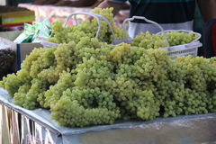 Turpan Grape Valley Royalty Free Stock Photo