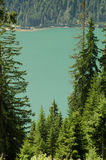 Turqoise mountain lake with firs Royalty Free Stock Photography