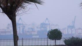 TURQUÍA - ESMIRNA - ENERO DE 2016: Tiempo Nevado en opinión del puerto de Esmirna y de Esmirna Nieva uno en pocos años en Esmirna metrajes