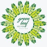 Turquesa e folhas tropicais do verde Projeto gráfico sem emenda com palmas surpreendentes Forma, interior, envolvendo, empacotame Foto de Stock Royalty Free