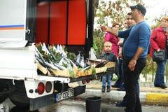 Turquia, Istambul 10 22 2016 - O homem turco vende peixes pelo carro imagem de stock royalty free