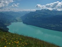 Turquoiese Lake Brienzersee Stock Image
