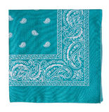 Turquoise bandanna Royalty Free Stock Images