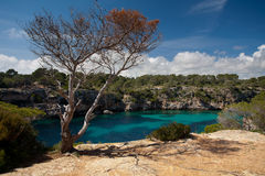 Turquoise Bay royalty free stock photography