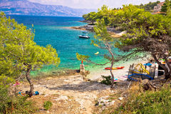 Turquoise beach in pine trees on Brac Royalty Free Stock Photo