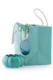 Turquoise bijou Royalty Free Stock Image