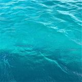 Turquoise Blue Clear Caribbean Water vector illustration
