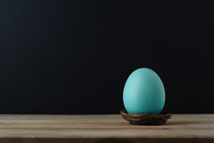Turquoise Blue Egg in Small Nest with Black Background Stock Photography