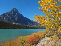Turquoise blue mountain lake in Canadian Rockies Stock Photo