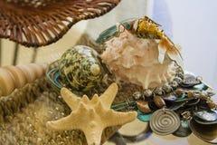 Turquoise blue necklace golden fish trinket Stock Photo