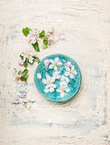 Turquoise blue water bowl with white blossom on light shabby chic wooden background. Top view Stock Photos