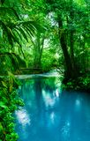 Turquoise blue water of the Celeste River. Magical blue waters of Rio Celeste in Tenorio Volcano National Park near Bijagua, Costa Rica Stock Images
