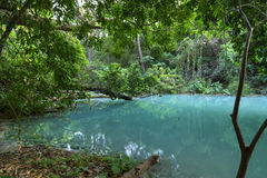 Turquoise blue water in Chiapas, Mexico jungle