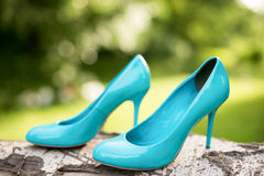 Turquoise bridesmaid shoes on the tree, green lawn.  Royalty Free Stock Images