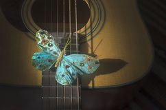 Turquoise butterfly on strings of acoustic guitar stock photos