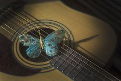Turquoise butterfly on strings of acoustic guitar stock photography