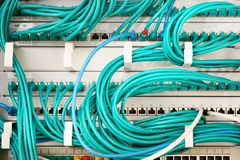 Turquoise cables and ethernet switches connected in a network server royalty free stock photos