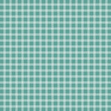 Turquoise checkered tablecloth. Turquoise picnic checkered  tablecloth Stock Image