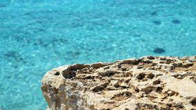 Turquoise clear sea rocks. Turquoise clear sea and rocks stock video footage