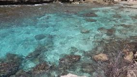 Turquoise clear water. Kaena Point State Park, Oahu, Hawaii stock video footage