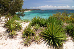 Turquoise coast on Bay of Pigeons Stock Images