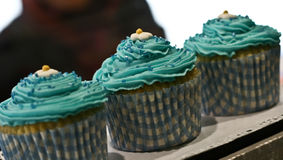 Turquoise cupcakes Royalty Free Stock Photography