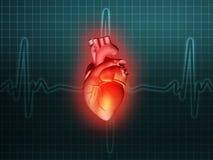 Turquoise d'illustration d'anatomie de la maladie cardiaque 3d illustration de vecteur