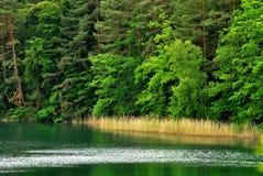 Turquoise de lac Image stock
