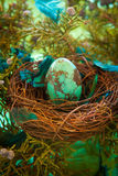 Turquoise Easter egg. Turquoise stone Easter egg in a nest with feathers Royalty Free Stock Images
