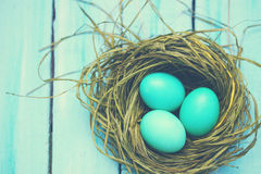 Turquoise eggs, tinted Stock Photos