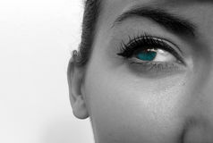 Turquoise Eye Royalty Free Stock Photography