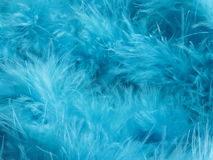Turquoise feathers background - stock photo Royalty Free Stock Photos