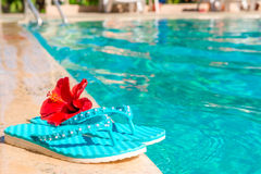 Turquoise flip flops and flower Stock Photography