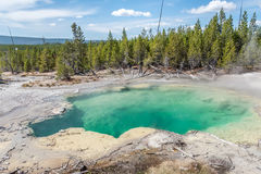 A turquoise hot spring in Yellowstone National Park. A clear blue and turquoise hot spring in Yellowstone National Park Stock Images