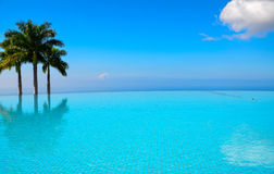 Turquoise Infinity Pool. Infinity pool with some palm trees and blue sky Stock Images
