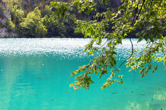 Turquoise lake Royalty Free Stock Photography