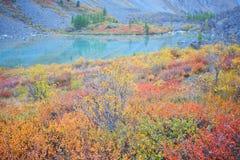 Turquoise Lake Royalty Free Stock Photography