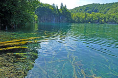 Turquoise lake in Plitvice, Croatia Stock Photo