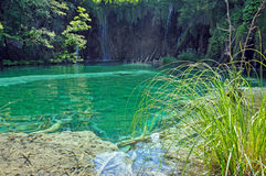 Turquoise lake in Plitvice, Croatia Stock Images